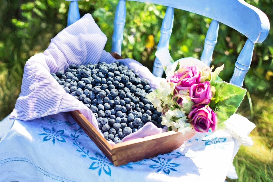 blueberries-870514_960_720